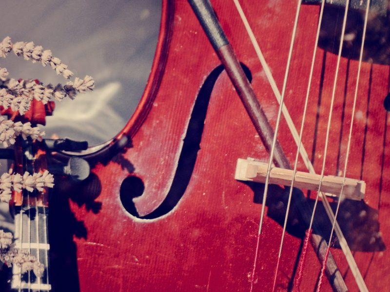 vintage-violin
